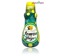Lemon & Ginger 500 ml - Nutriflor