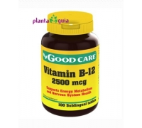 VITAMINA B12 2500 mcg GOOD CARE