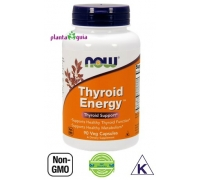 THYROID ENERGY 90 CAPSULAS NOW FOODS