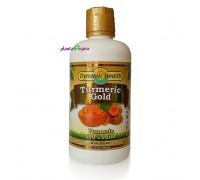 TURMERIC (Curcuma) 946 ml - Dynamic Health