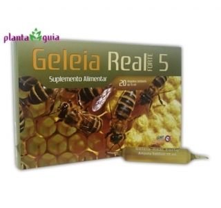 Geleia Real Forte 5000 mg | Soldiet