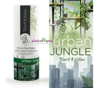 Bruma/AROMA AMBIENTE URBAN JUNGLE 50 ml