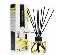 MIKADO BLACK EDITION - LIMONCELLO 125 ml BOLES D`OLOR